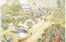 mr mcgregor s garden rabbit friends wiki fandom