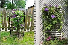 Support For Climbing Plants - 17 best upcycled trellis ideas for garden cool trellis designs
