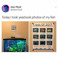 my yearbook picture dopl3r memes alec ploof alecploof today i took yearbook