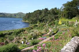 native scottish plants botanical gardens and horticultural societies in uk botanical