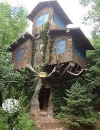 weird house dağ evi rize ev plan pinterest tree houses secret hideaway