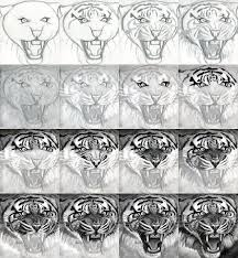 how to draw a realistic tiger honestly i could only do the first