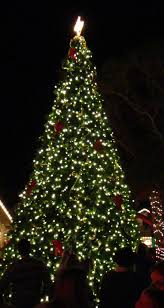 annual celebration amelia island tree lighting