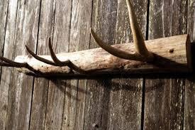 rustic deer antler coat rack for him wall decor rustic deer