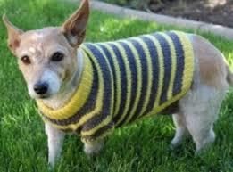 walkin u0027 ritzie dog sweater walkin ritzie dog sweater 2 50