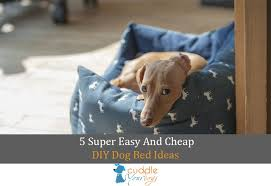 Homemade Dog Beds 5 Super Easy And Cheap Diy Dog Bed Ideas Cuddle Your Dogs