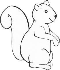 squirrel 32 animals u2013 printable coloring pages