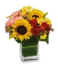 greenville florist season for sunflowers floral arrangement in greenville oh helen s