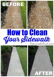 Cleaning Concrete Patio Mold How To Clean A Sidewalk