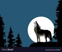 wolf howling at the moon royalty free vector image