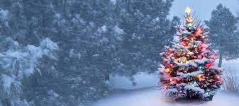 white christmas dreaming of a white christmas get our forecast farmers almanac