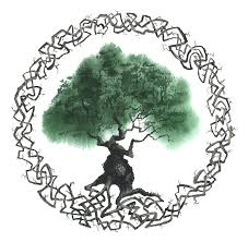 tree symbol meaning celtic tree of life symbol robert jr graham