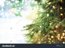 royalty free closeup of christmas tree background 297372143 stock