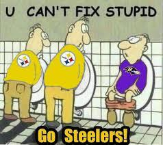 Anti Steelers Memes - 30 best anti ravens images on pinterest baltimore ravens