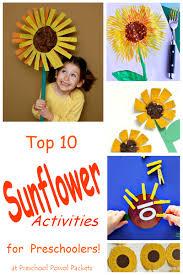 top 10 sunflower activities for preschool preschool powol packets