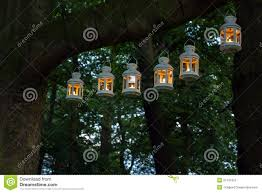 Hanging Tree Lights by Outdoor Party Night Illumination Stock Image Image 31421551