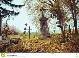 spooky graveyard scene scary trees stock photos images