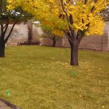 Landscaping Albuquerque Nm by Gonzales Landscape And Grounds Maintenance Landscaping