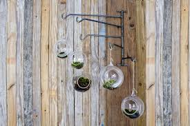 custom hanging terrarium swing rack by new antiquity custommade com
