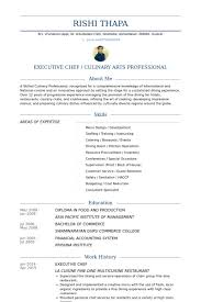 chef resume exles resume sle for chef exle template