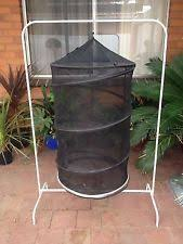 homemade insect cages trailside makeover pinterest insects