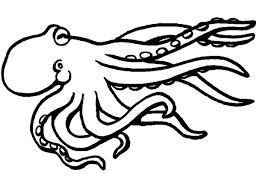 octopus coloring page octopus coloring pages realistic octopus