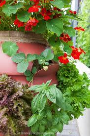 vertical barrel planter greenfuse photos garden farm u0026 food