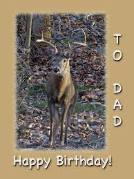 birthday greeting card whitetail deer buck photograph by