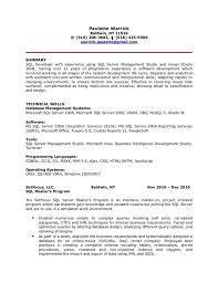 business intelligence developer cover letter