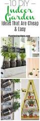 small indoor garden ideas 10 indoor garden ideas that are cheap and easy plant instructions