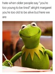 Funny Frog Meme - beautiful 57 best kermit the frog images on pinterest wallpaper