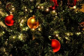 free images branch light holiday glow christmas tree