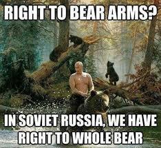 Hairless Bear Meme - patient bear memes image memes at relatably com
