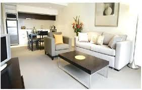 Cheap Living Room Ideas Apartment Small Apartment Decorating Ideas On A Budget Joeleonard
