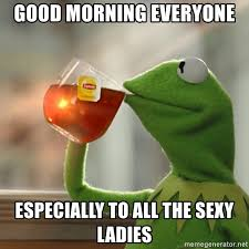 Good Morning Ladies Meme - good morning everyone especially to all the sexy ladies kermit the