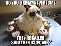 New Grumpy Cat Meme - grumpy cat strikes again imgflip