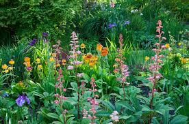 garden design garden design with bog garden on pinterest ponds
