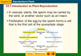 introduction chapter 23 biology biol enlace web