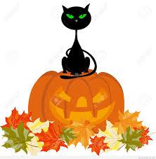 best 25 halloween photos ideas on pinterest halloween photo