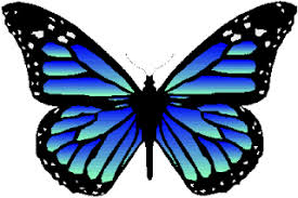 butterfly patterns designs and