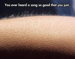 Goosebumps Meme - you gotta love music the meta picture
