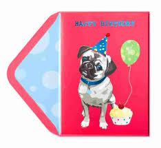 cute birthday pug funny birthday cards papyrus