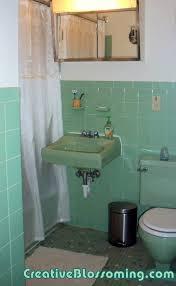 Navy And Green Bathroom Bathroom Vintage Seafoam Green Apinfectologia Org