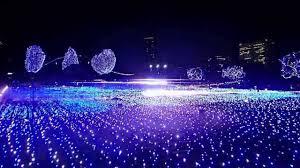 amazing light show in japan youtube idolza