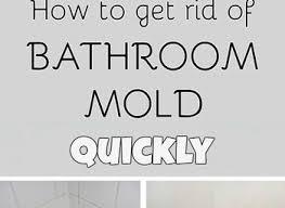 Black Mould In Bathroom Dangerous Black Mold In Bathroom Dangerous Realie
