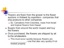 flower companies floriculture industry exploring the international flower market