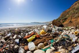 oceans will have more plastic than fish by 2050 study time com