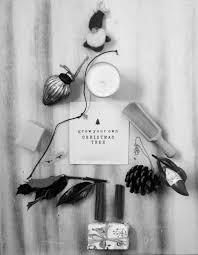 grow your own christmas tree seed packet home of la juniper