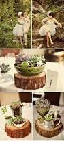 Log Centerpiece Ideas by 48 Best Party Images On Pinterest Parties Marriage And Candles