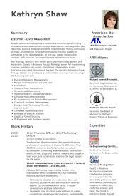 chief financial officer resume samples visualcv resume samples